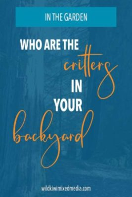 pinterest pin who are the critters in myback yard post